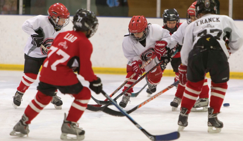 Hockey Scores With Area Youth