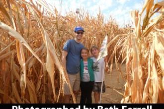 corn-maze-