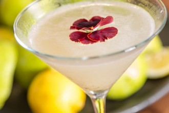 delish-fall-orders-pear-martini