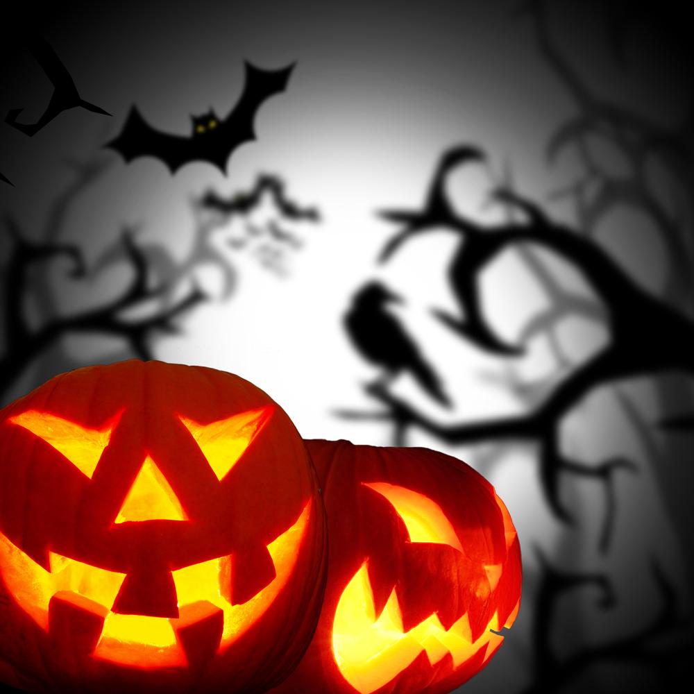 Scary, Spooky Fall Fun | Cary Magazine