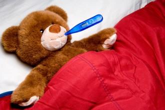teddy-bear-clinic