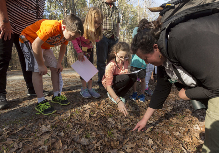"""Leader Joanne St. Clair crouches in the forest bracken, nudging aside leaves to reveal a tiny specimen. """"It's a little stunted, but that's a mushroom,"""" she says. Alex Erling, 9, left, Meredith Overcash, 10, and her sister Norah, 12, gather around to look so they can mark off the mushroom square on their bingo cards."""