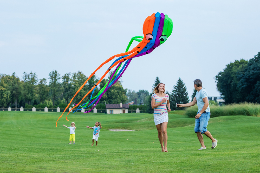 Longest kite tail. Fastest take-off. Best tangle. These are just some of the awards available at this weekend's Kite Festival in Cary.
