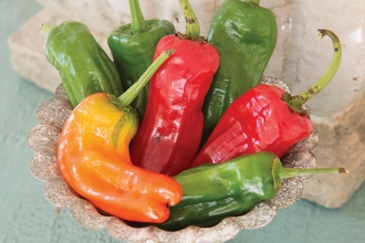 When unripe, Cubanelle peppers are light yellowish-green in color, but will turn bright red when ripe. It is a colorful addition to your garden or your stir fry.