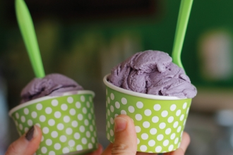 Blueberry ice cream from Fresh Local Ice Cream