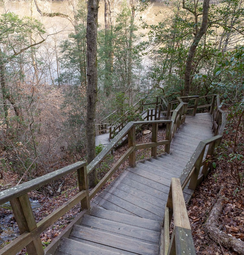 A 135-step wooden staircase leads hikers to the banks of the Cape Fear River and the bottom of the park's namesake.