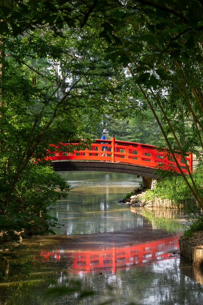 The iconic red bridge is a spot where visitors stop and take in the garden's beauty. It received the name Meyer Bridge in 2016, honoring the highly-regarded physicist J. Horst Meyer, who taught at Duke University for more than 50 years.